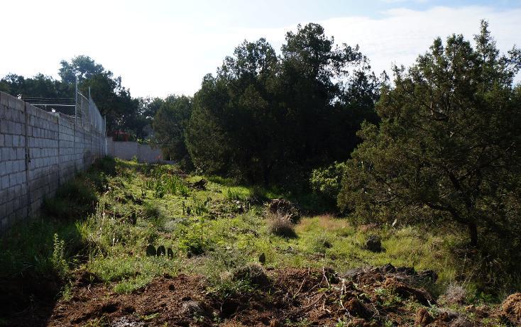 Foto de terreno habitacional en venta en  , actipac, tetla de la solidaridad, tlaxcala, 1665628 No. 08