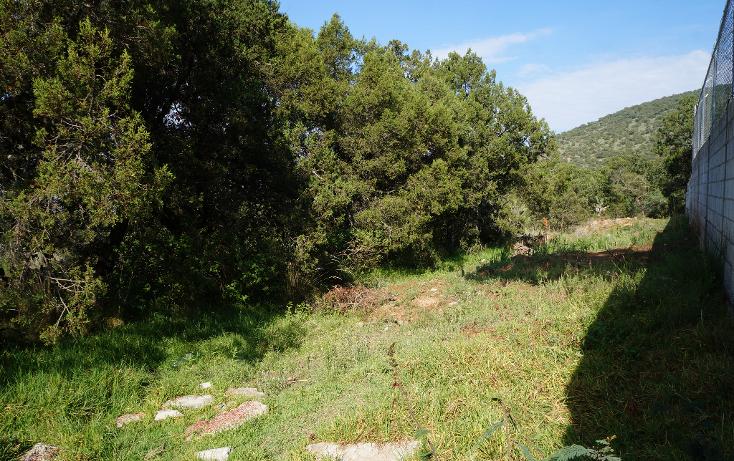 Foto de terreno habitacional en venta en  , actipac, tetla de la solidaridad, tlaxcala, 1665628 No. 13