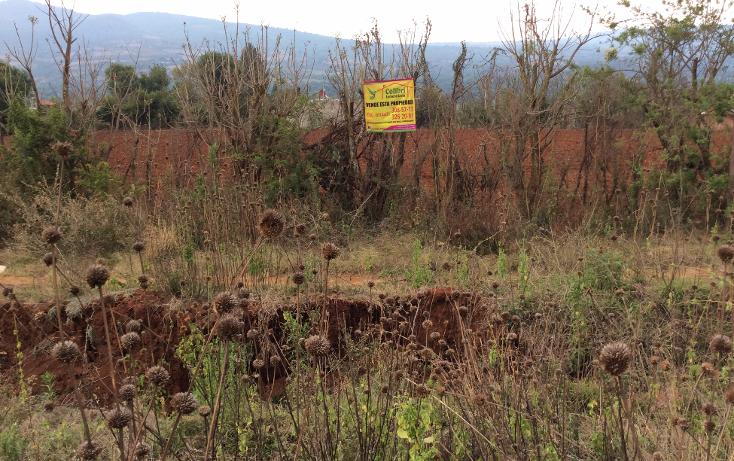 Foto de terreno comercial en venta en  , acuitzio del canje, acuitzio, michoacán de ocampo, 1129059 No. 01