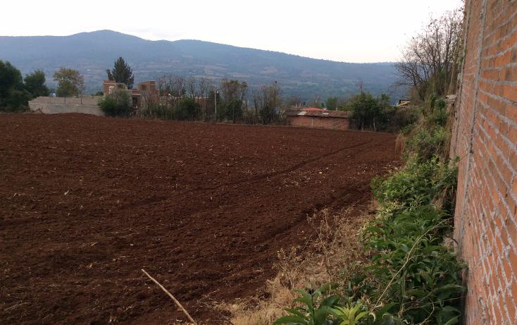 Foto de terreno comercial en venta en  , acuitzio del canje, acuitzio, michoac?n de ocampo, 1129059 No. 03