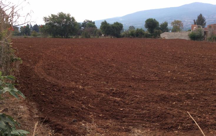 Foto de terreno comercial en venta en  , acuitzio del canje, acuitzio, michoacán de ocampo, 1129059 No. 08