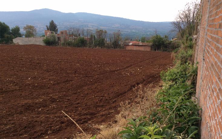 Foto de terreno comercial en venta en  , acuitzio del canje, acuitzio, michoacán de ocampo, 1129059 No. 09
