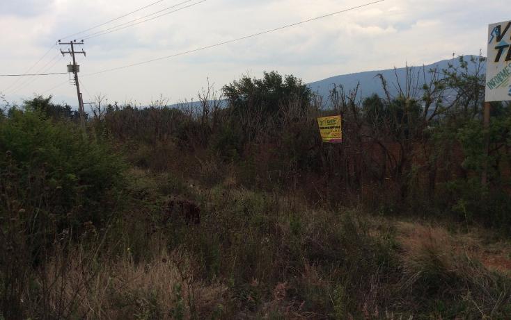 Foto de terreno comercial en venta en  , acuitzio del canje, acuitzio, michoac?n de ocampo, 1129059 No. 11