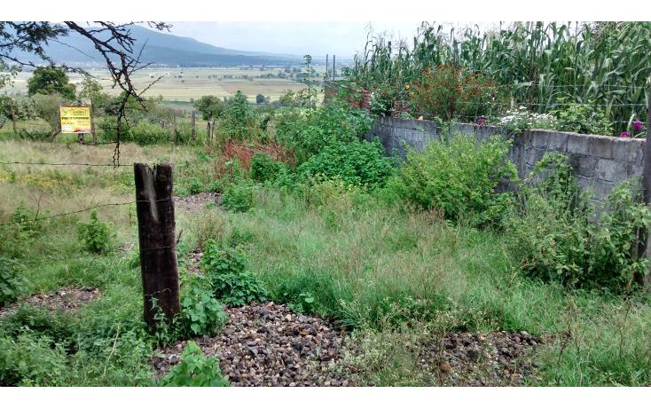 Foto de terreno habitacional en venta en  , acuitzio del canje, acuitzio, michoacán de ocampo, 1278573 No. 02