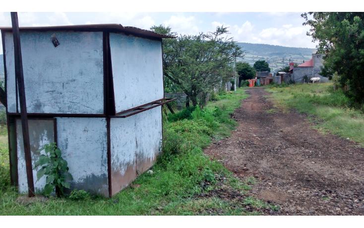 Foto de terreno habitacional en venta en  , acuitzio del canje, acuitzio, michoacán de ocampo, 1278573 No. 04