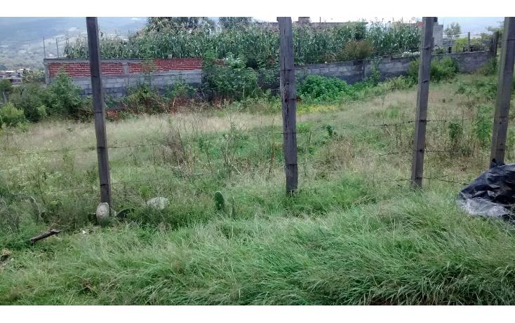 Foto de terreno habitacional en venta en  , acuitzio del canje, acuitzio, michoacán de ocampo, 1278573 No. 05