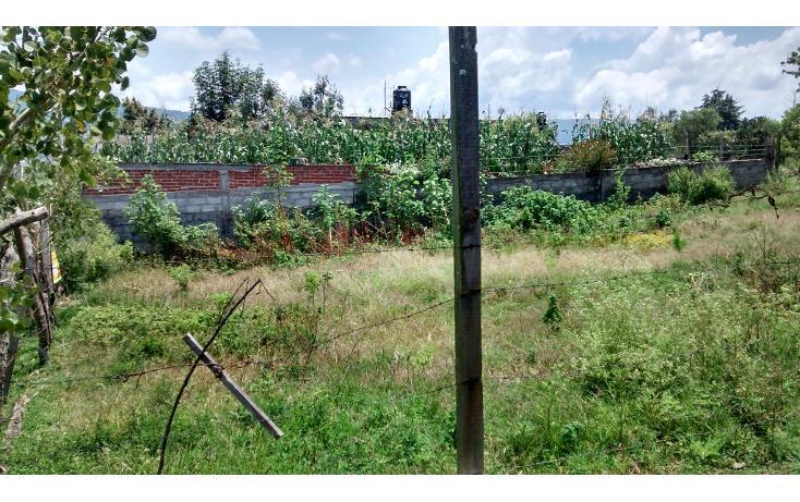 Foto de terreno habitacional en venta en  , acuitzio del canje, acuitzio, michoacán de ocampo, 1278573 No. 06