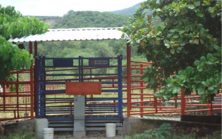 Foto de terreno habitacional en venta en acuzac 366, tehuixtla, jojutla, morelos, 1628596 no 02