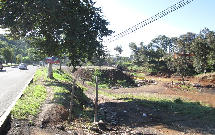 Foto de terreno habitacional en venta en  , adalberto tejeda, xalapa, veracruz de ignacio de la llave, 1353839 No. 06