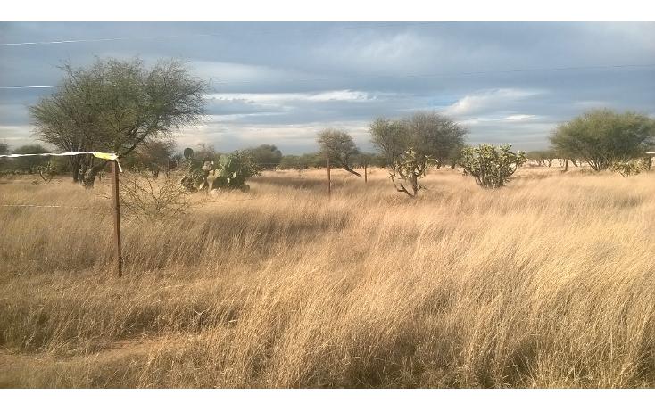 Foto de terreno habitacional en venta en  , adolfo lópez mateos 2a sección, tequisquiapan, querétaro, 1465599 No. 01