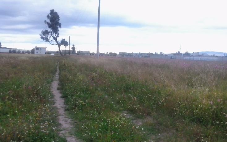 Foto de terreno habitacional en venta en  , domingo de muñoz arenas, muñoz de domingo arenas, tlaxcala, 1963449 No. 07