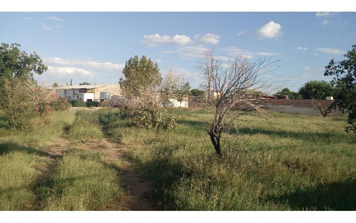 Foto de terreno comercial en venta en  , aeropuerto, chihuahua, chihuahua, 1174209 No. 10
