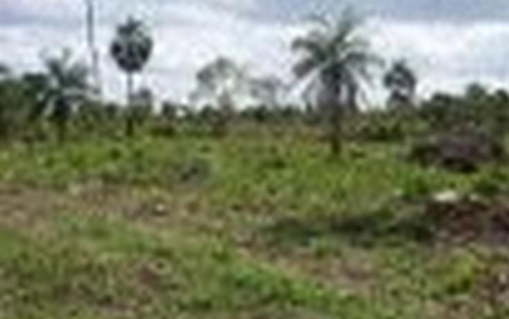 Foto de terreno comercial en venta en  , aeropuerto, othón p. blanco, quintana roo, 1441961 No. 05