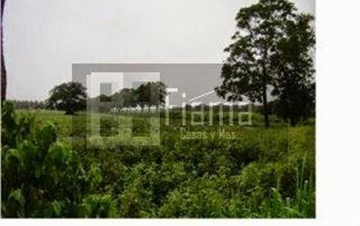 Foto de terreno habitacional en venta en  , aeropuerto, puerto vallarta, jalisco, 1286609 No. 05