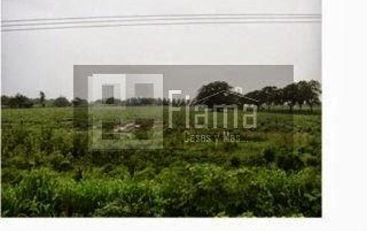 Foto de terreno habitacional en venta en  , aeropuerto, puerto vallarta, jalisco, 1286609 No. 06