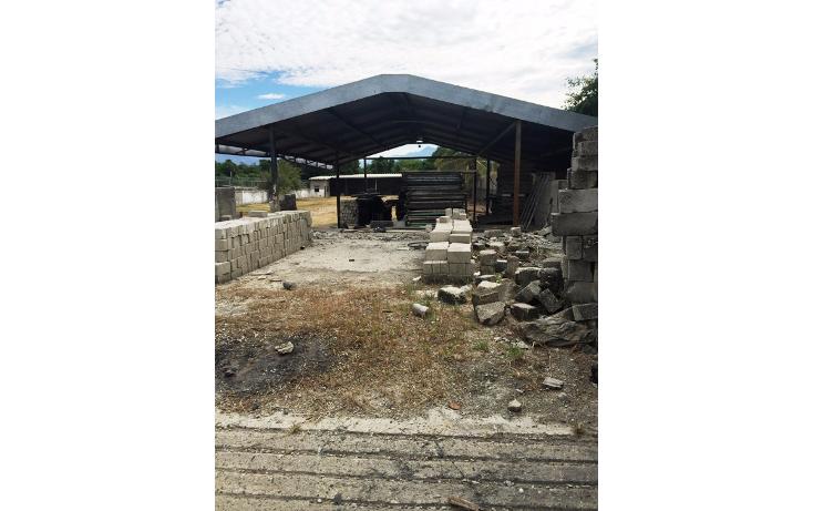 Foto de terreno industrial en venta en  , aeropuerto, puerto vallarta, jalisco, 1351855 No. 07