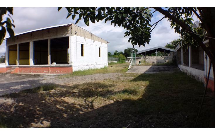 Foto de terreno industrial en venta en  , aeropuerto, puerto vallarta, jalisco, 1351855 No. 10