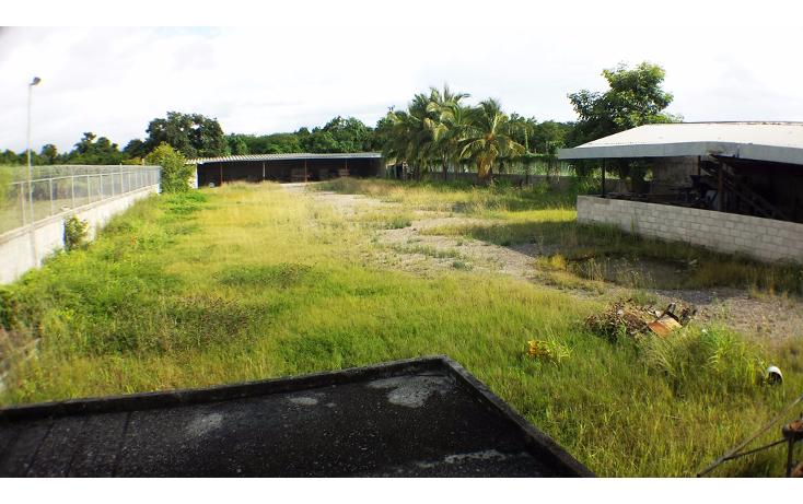 Foto de terreno industrial en venta en  , aeropuerto, puerto vallarta, jalisco, 1351855 No. 12