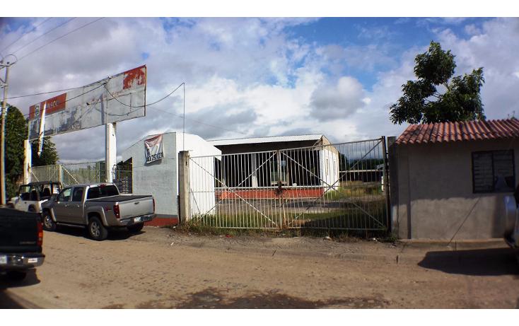 Foto de terreno industrial en venta en  , aeropuerto, puerto vallarta, jalisco, 1351855 No. 16
