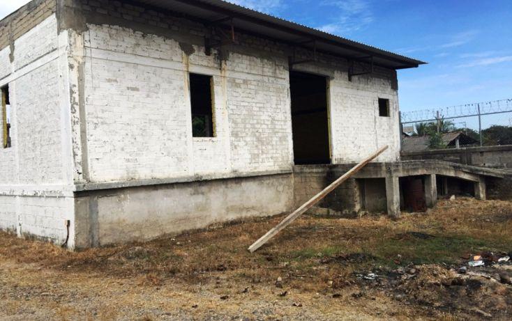 Foto de bodega en renta en, aeropuerto, puerto vallarta, jalisco, 1572226 no 07