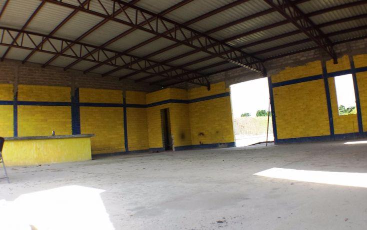 Foto de bodega en renta en, aeropuerto, puerto vallarta, jalisco, 1572226 no 11