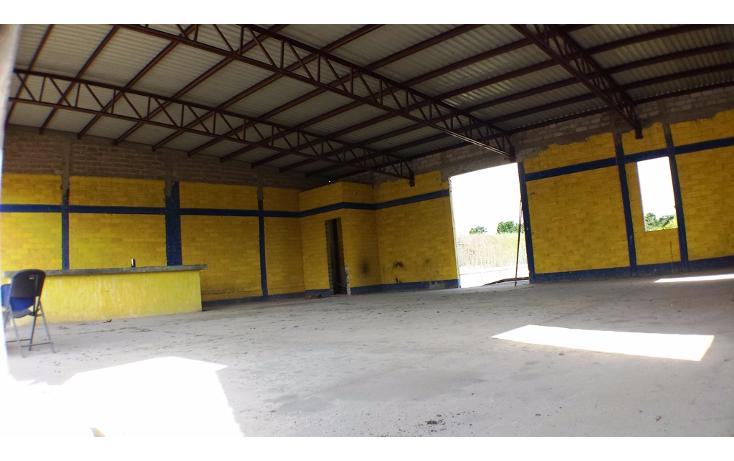 Foto de nave industrial en renta en  , aeropuerto, puerto vallarta, jalisco, 1572226 No. 11