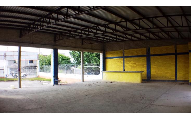 Foto de nave industrial en renta en  , aeropuerto, puerto vallarta, jalisco, 1572226 No. 13