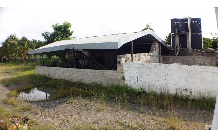 Foto de nave industrial en renta en  , aeropuerto, puerto vallarta, jalisco, 1758115 No. 16