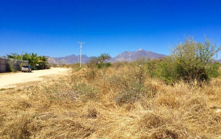 Foto de terreno habitacional en venta en  , santa anita, los cabos, baja california sur, 1769334 No. 08