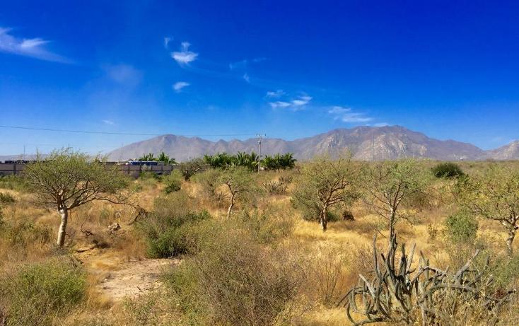 Foto de terreno habitacional en venta en  , santa anita, los cabos, baja california sur, 1769334 No. 11