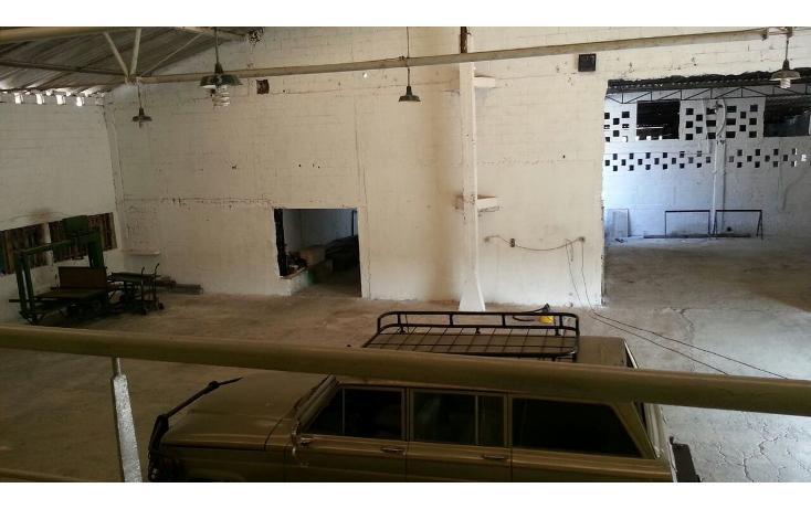 Foto de nave industrial en renta en  , aeropuerto, veracruz, veracruz de ignacio de la llave, 1344011 No. 03