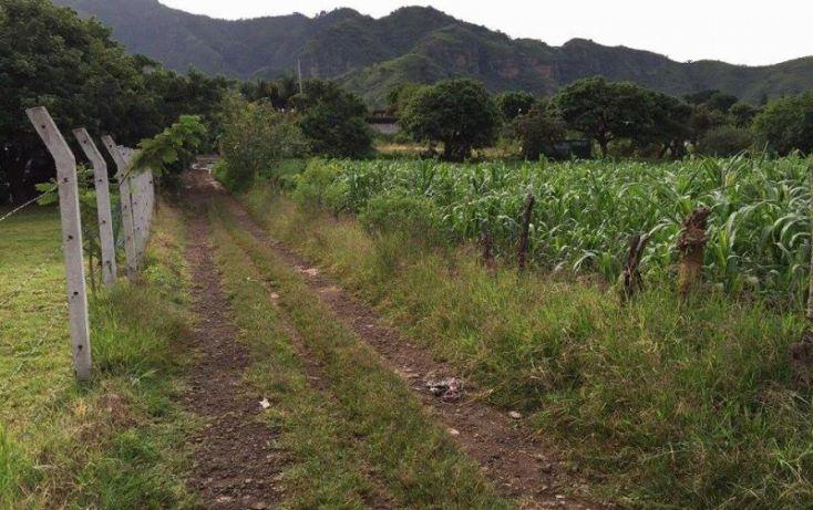 Foto de terreno habitacional en venta en agricultura, santa maría xoquiac, malinalco, estado de méxico, 1317033 no 01