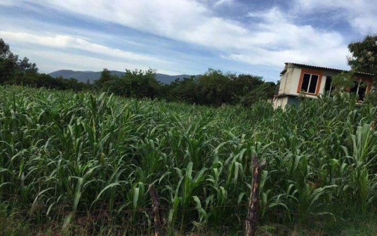 Foto de terreno habitacional en venta en agricultura, santa maría xoquiac, malinalco, estado de méxico, 1317033 no 02