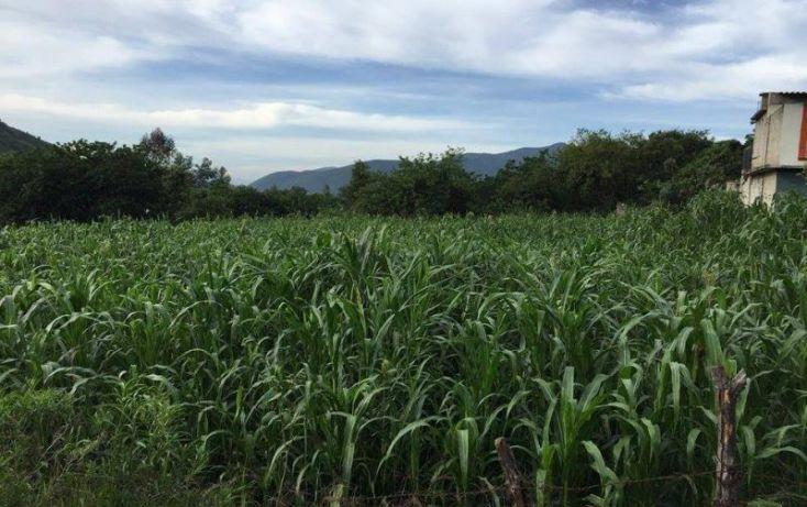 Foto de terreno habitacional en venta en agricultura, santa maría xoquiac, malinalco, estado de méxico, 1317033 no 03