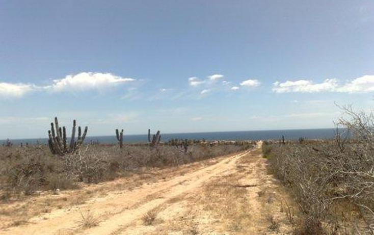 Foto de terreno habitacional en venta en  , agua blanca, la paz, baja california sur, 1101247 No. 01