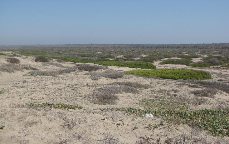 Foto de terreno habitacional en venta en  , agua blanca, la paz, baja california sur, 1129353 No. 04