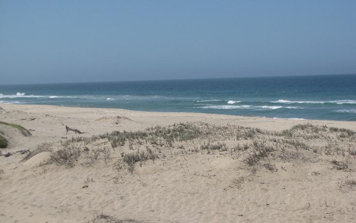 Foto de terreno habitacional en venta en  , agua blanca, la paz, baja california sur, 1129353 No. 16