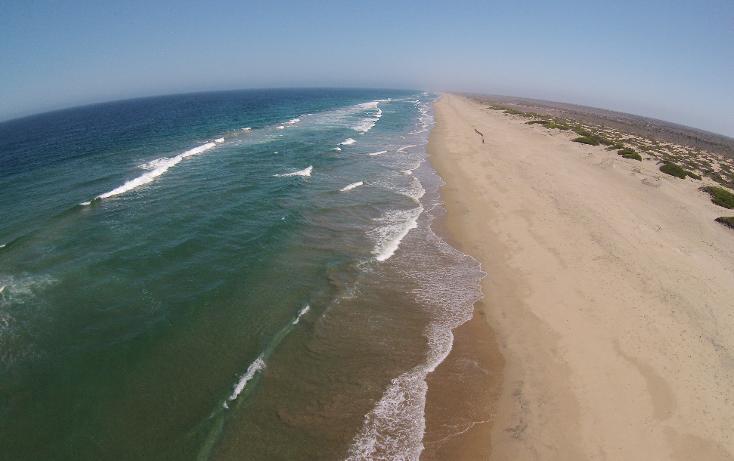 Foto de terreno habitacional en venta en  , agua blanca, la paz, baja california sur, 1265995 No. 01