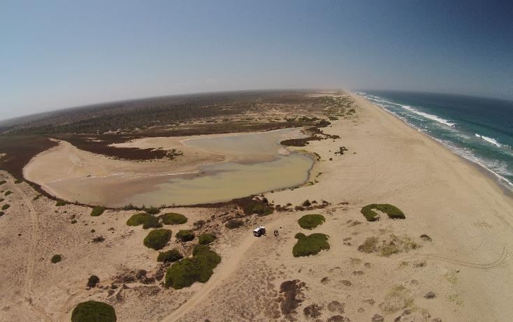 Foto de terreno habitacional en venta en  , agua blanca, la paz, baja california sur, 1265995 No. 06