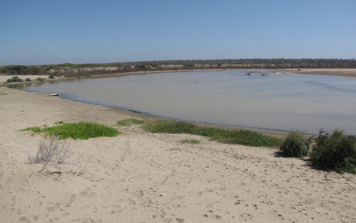 Foto de terreno habitacional en venta en  , agua blanca, la paz, baja california sur, 1265995 No. 09