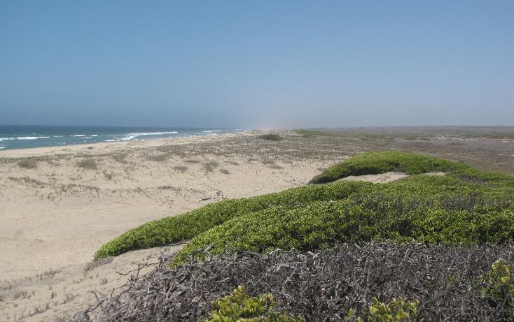 Foto de terreno habitacional en venta en  , agua blanca, la paz, baja california sur, 1265995 No. 13