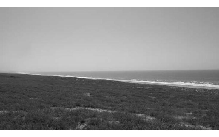 Foto de terreno comercial en venta en  , agua blanca, la paz, baja california sur, 1272985 No. 06