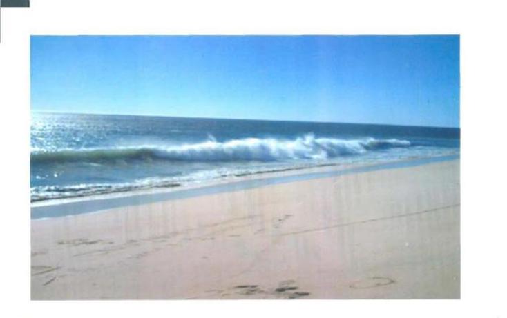 Foto de terreno habitacional en venta en  , agua blanca, la paz, baja california sur, 1273653 No. 10