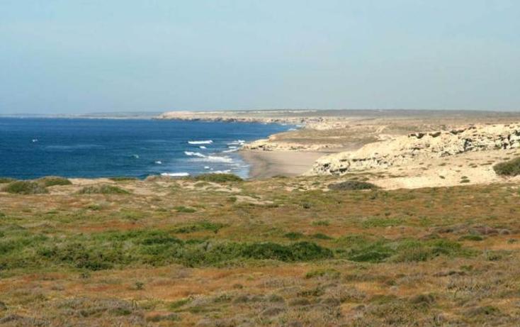 Foto de terreno habitacional en venta en  , agua blanca, la paz, baja california sur, 1294449 No. 05