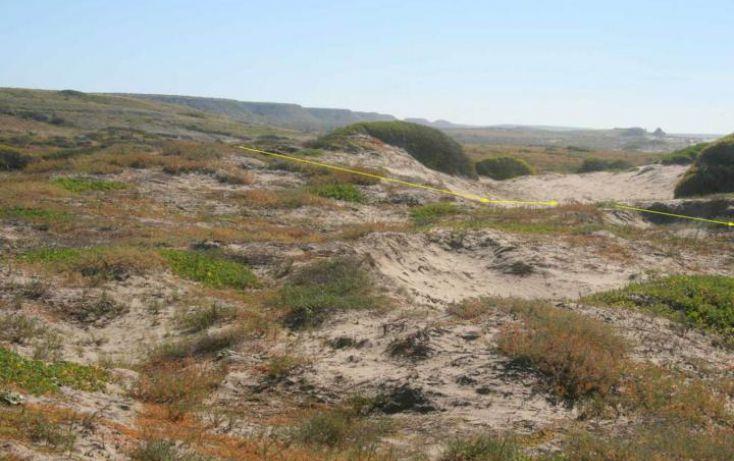 Foto de terreno habitacional en venta en, agua blanca, la paz, baja california sur, 1294449 no 06
