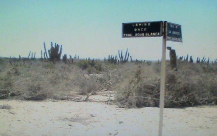 Foto de terreno habitacional en venta en  , agua blanca, la paz, baja california sur, 1359733 No. 04