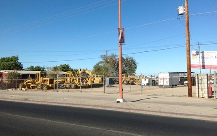 Foto de terreno comercial en renta en  , agua clara, la paz, baja california sur, 1075911 No. 03