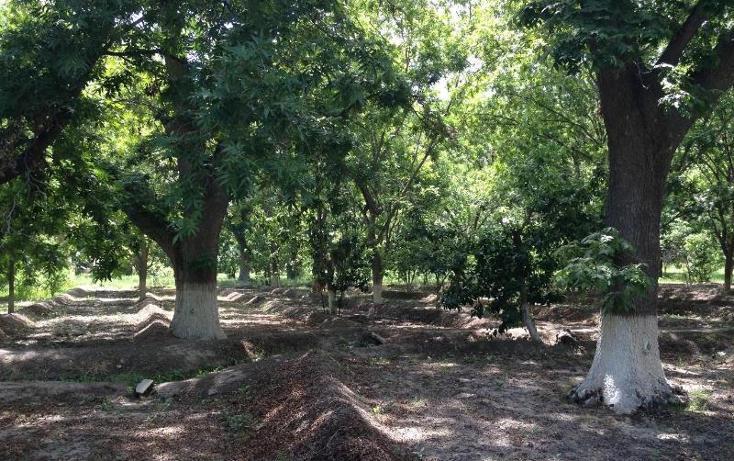Foto de rancho en venta en  , agua de los padres, parras, coahuila de zaragoza, 394165 No. 01
