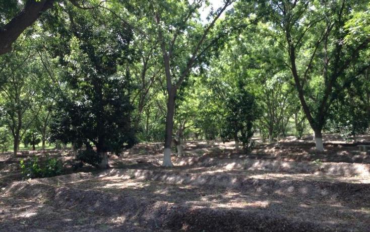 Foto de rancho en venta en  , agua de los padres, parras, coahuila de zaragoza, 394165 No. 08