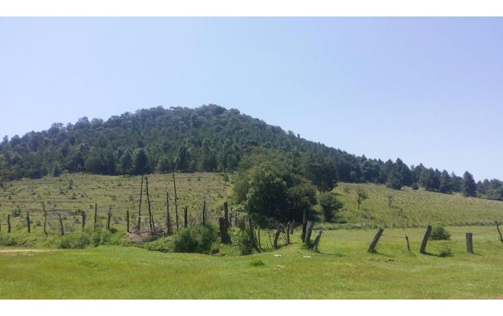 Foto de terreno comercial en venta en  , agua del pino, hidalgo, michoacán de ocampo, 1181887 No. 02